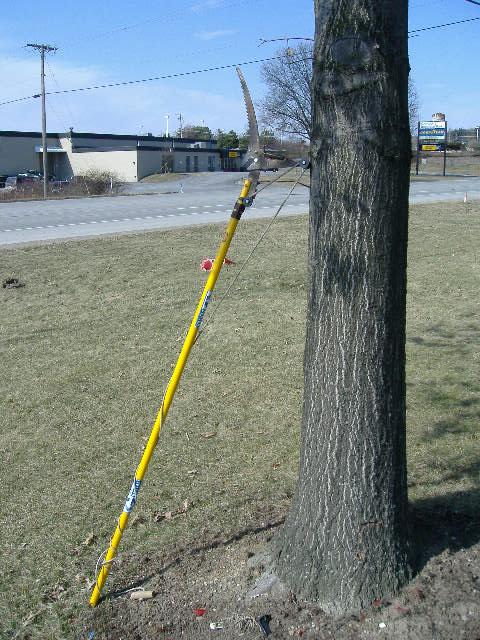 Manual Pruning Saw