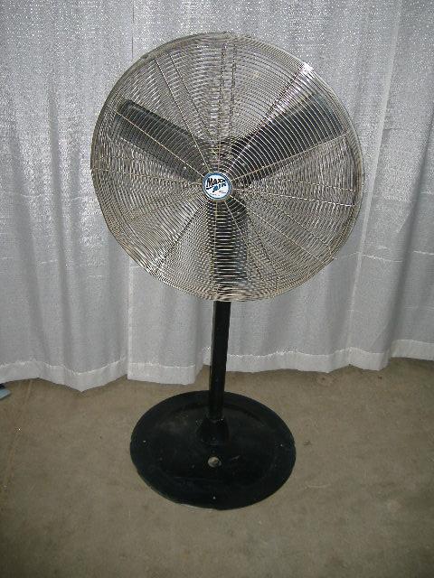 Pedestal Fans